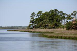 Apalachicola Bay dunn